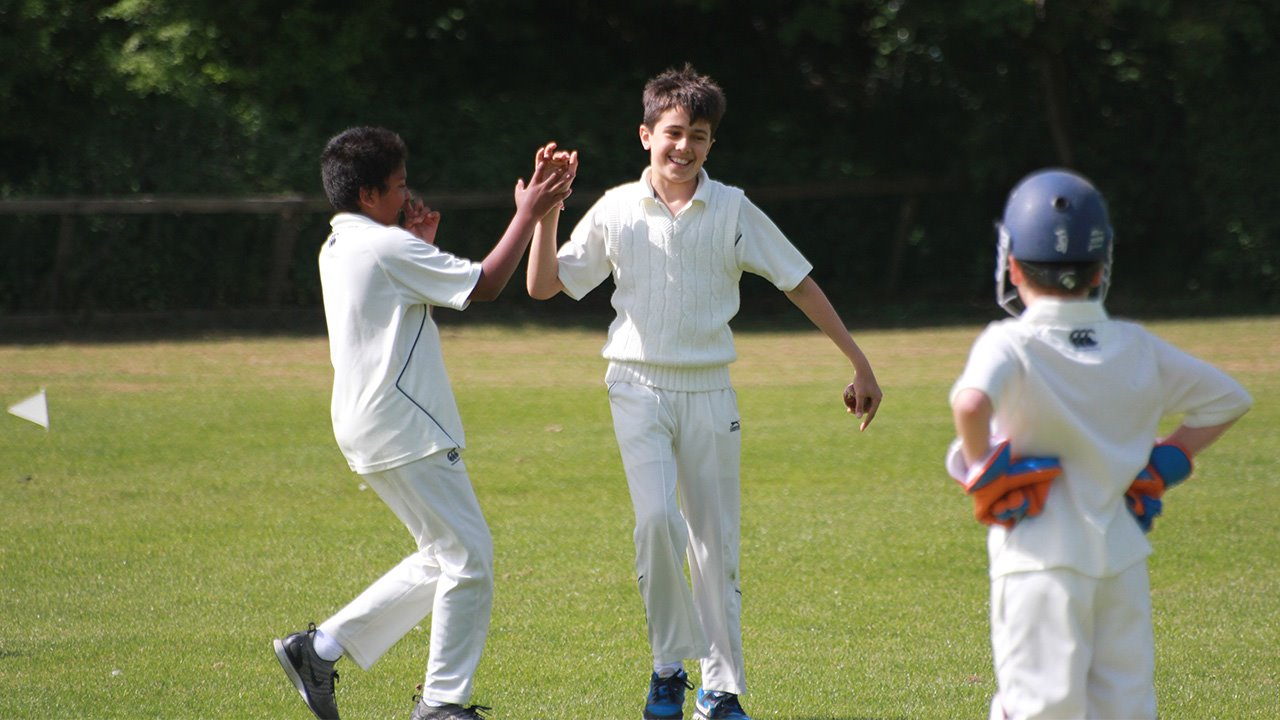 Boys cricket landscape group.jpg